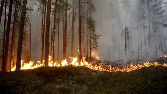 Record-breaking heat hits Norway, Finland and Sweden