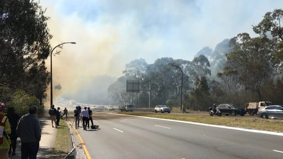 Grass fire at Macquarie Park causes traffic chaos on Lane Cove road