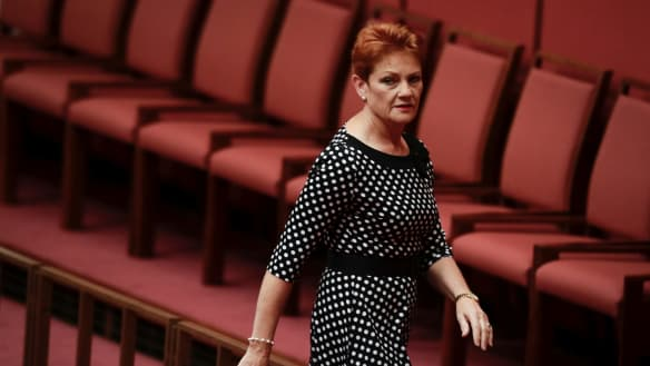 Senator Pauline Hanson in the Senate at Parliament House in Canberra on Wednesday 21 March 2018. fedpol Photo: Alex Ellinghausen