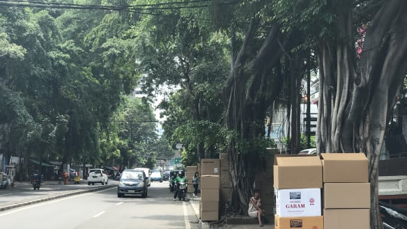 The box sellers of Jakarta ply their cardboard trade