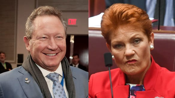 The pledge from Andrew Forrest that helped win over Pauline Hanson