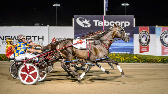 My Field Marshall breaks record in storming Miracle Mile win