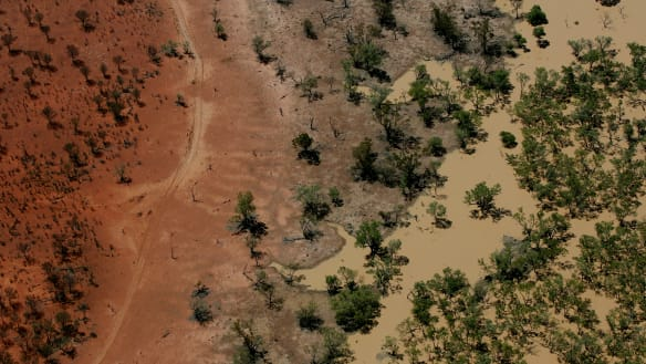 Questions raised about Joyce's 'goanna water' buyback deal