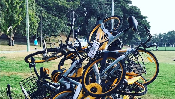 Parking a must for dockless bike share to avoid another 'disaster': expert