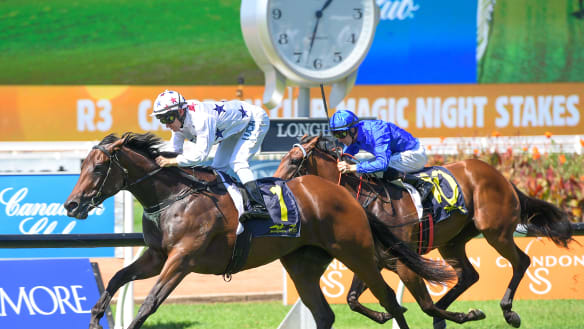 Sunlight and Written By stay top of Slipper market after strong wins