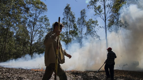 Fighting fire with fire: cultural burning at Bundanon brings life back to the land