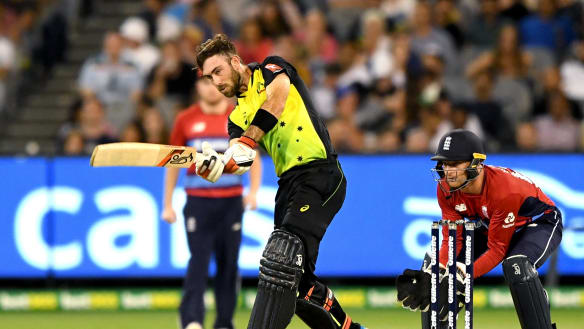 More T20s for Australia as cricket searches for meaning