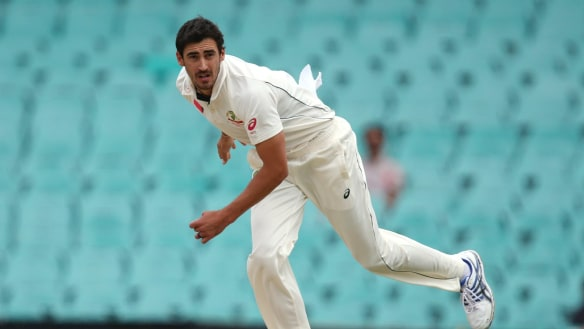 Happy returns: Mitchell Starc is predicted to have a major impact during the Ashes series.