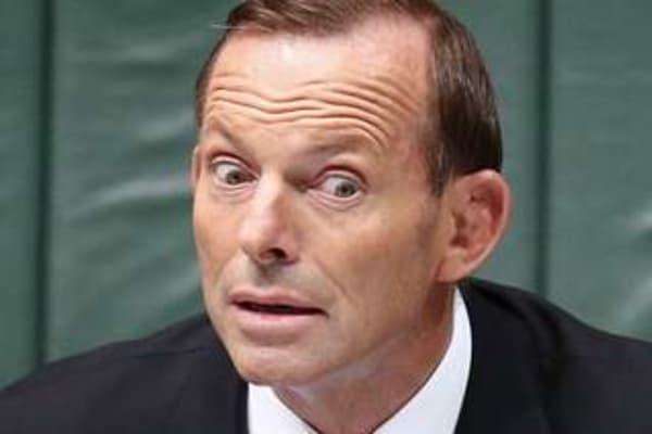 dummies guide to australian politics