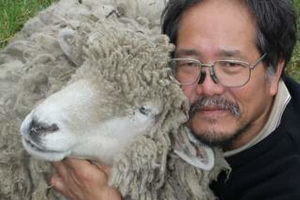 Vu Ho loses fight against Greater Dandenong Council to keep his sheep Baa