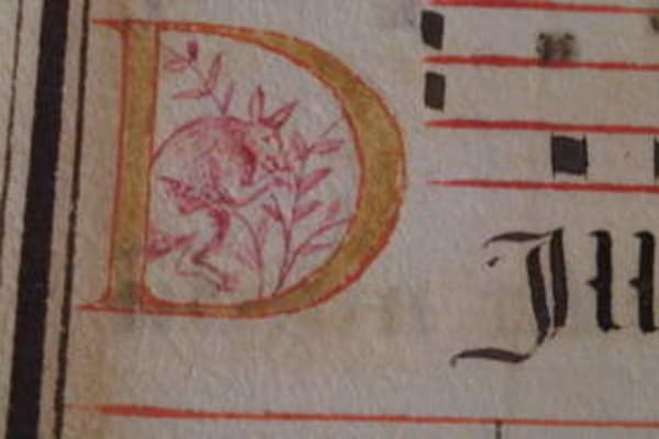 16th-century manuscript could rewrite Australian history