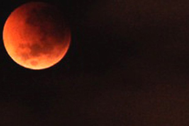 red moon qld - photo #48