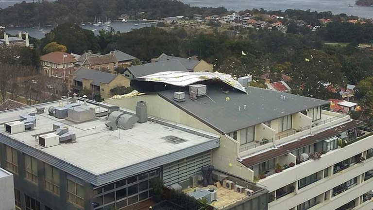 Wild Winds Hit Sydney