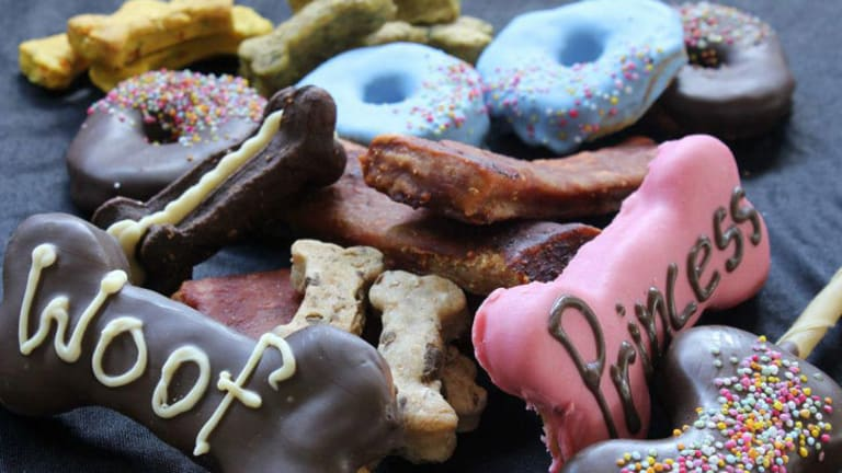 Newcastle's Gourmet Dog Barkery, a cafe and bakery, specialises in dog treats.