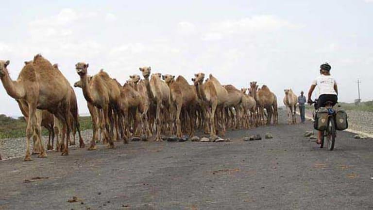 Kate Leeming in North Africa.
