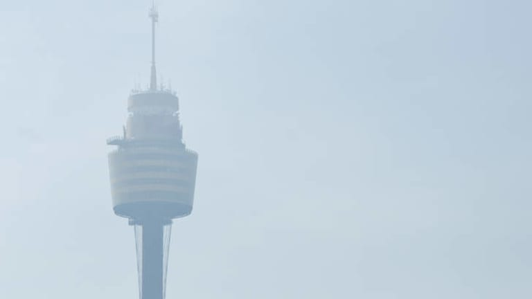 Sydney Tower as seen from the ground on Saturday morning.