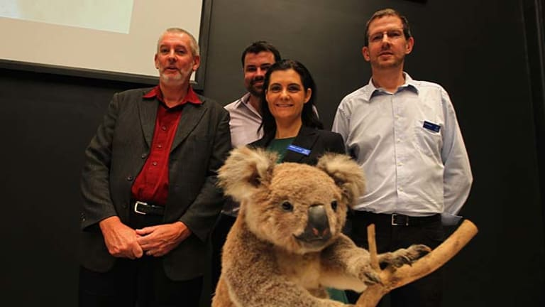 Breakthrough: Project members (from left) Peter Timms, Adam Polkinghorne, Rebecca Johnson and Mark Eldridge.