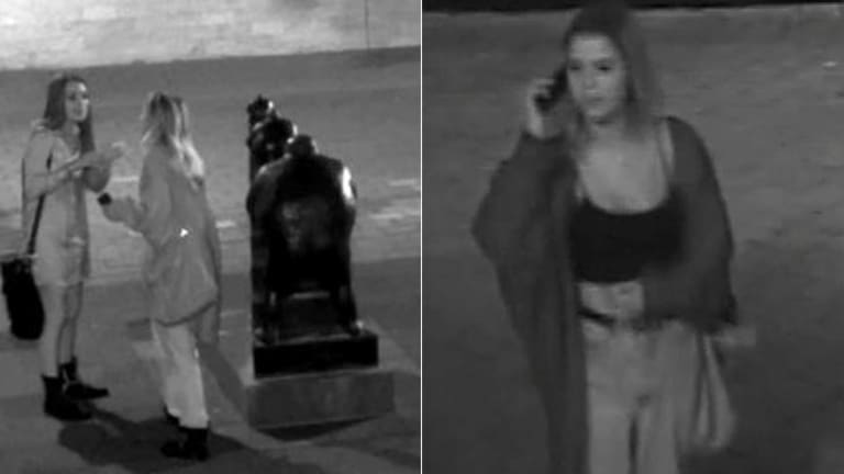 The women police would like to speak with in connection to the vandalism.