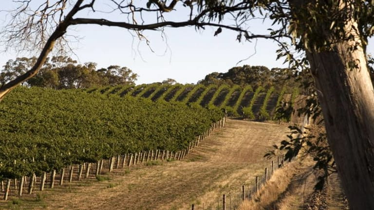 Clare Valley.
