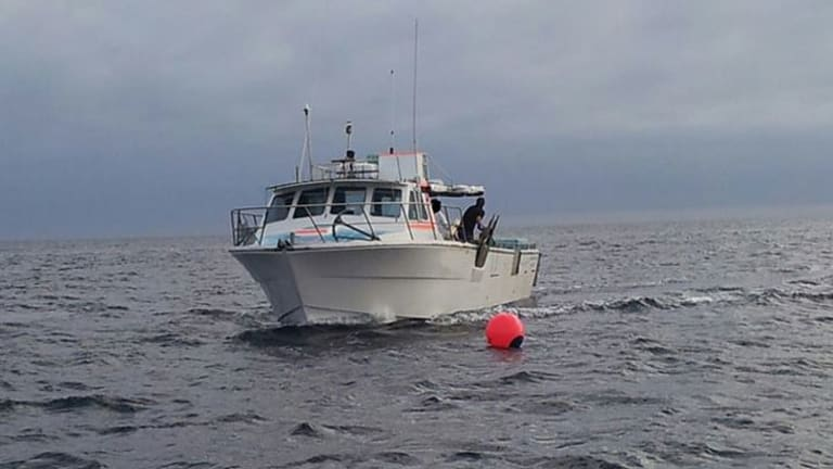 The fisherman's boat near one of WA's controversial new drumlines.