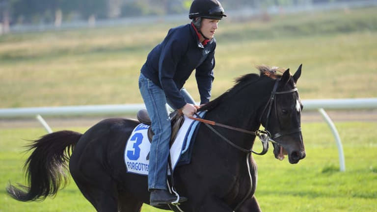 Ryan O'Reilly riding Forgotten Voice in a trackwork session.