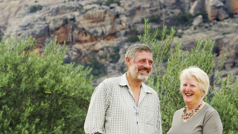 Branching out ... Mount Zero's Neil and Jane Seymour.
