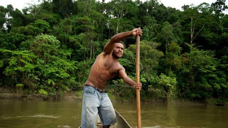 Contentious ... Jackson Ubre paddles from Drimgas, on the Fly River, near Kiunga.