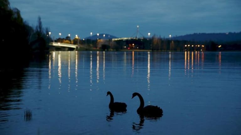 Serene scene: Lake Burley Griffin provides a haven for many species of bird.
