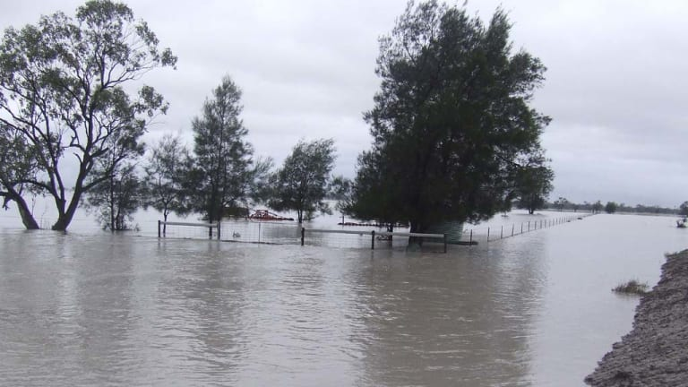 Flooding north of Moree today.