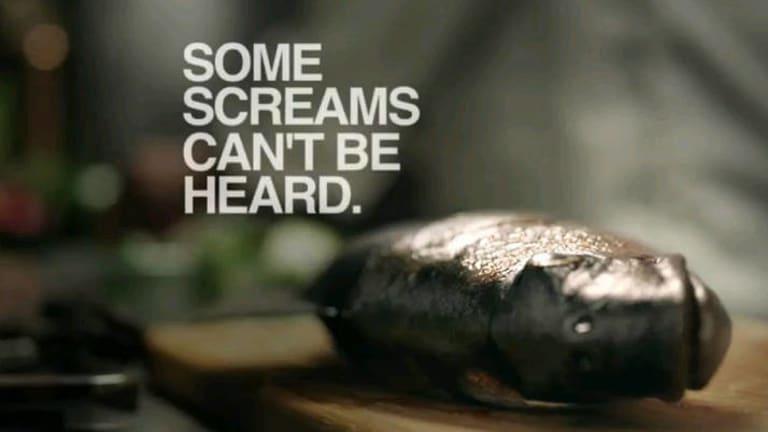 A still from PETA's 'Silent Scream' campaign video.