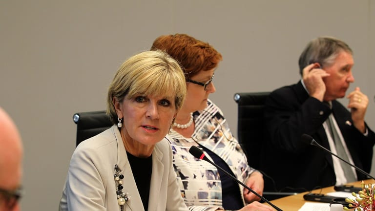 Foreign Minister Julie Bishop and newly-appointed Minister for International Development and the Pacific Steven Ciobo must do more to communicate to the public the importance and successes of the Australian aid program.