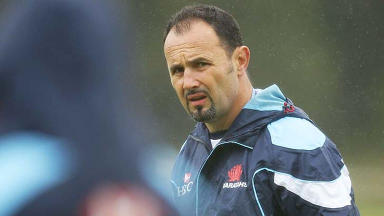 Michael Foley has been appointed as the new coach of the Western Force Super Rugby side.