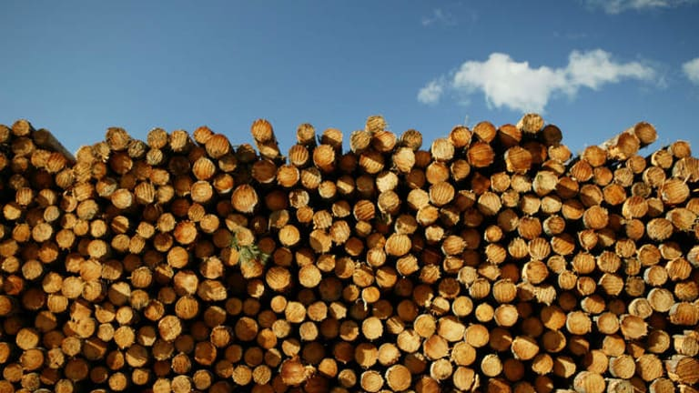 The logging of hardwood native forests: under pressure from every direction.