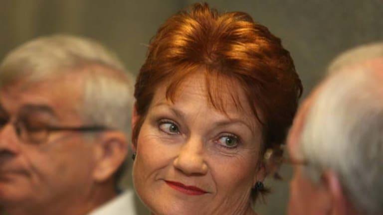 Still fighting ... Pauline Hanson.