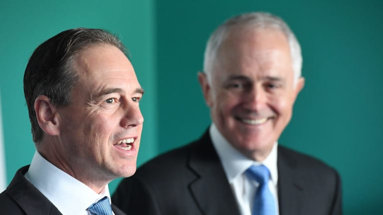 Health Minister Greg Hunt will announce the Turnbull government will subsidise a hepatitis C treatment, Epclusa.