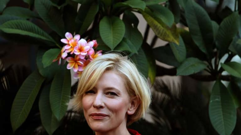 Cate Blanchett has been criticised for appearing in the carbon tax ad.