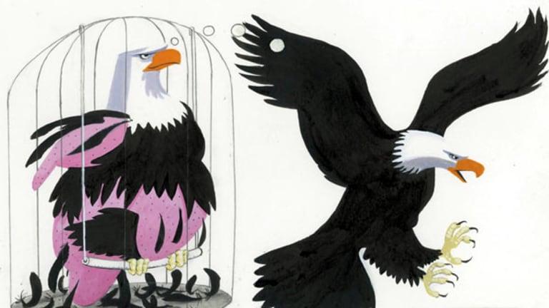 Simon Letch illustration
