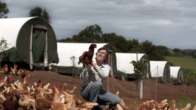 Best-laid plans … Simon Cripps-Clark says there has been a ''huge loss of confidence in free range'' due to inaccurate labelling.