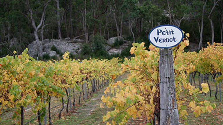 'New world' wine varieties such a Petit Verdot thrive in Queensland in regions such as the Granite Belt.