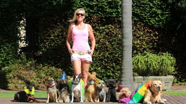 Caroline Brown: left corporate life to focus on her furry friends.