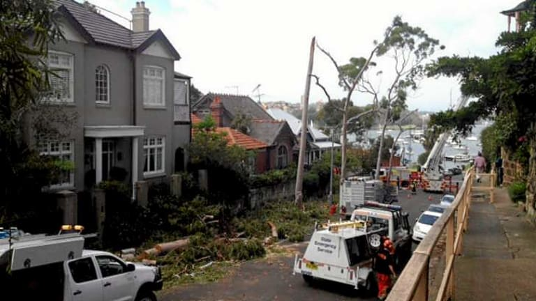 View of storm damage in Willoughby Street, Kirribilli.