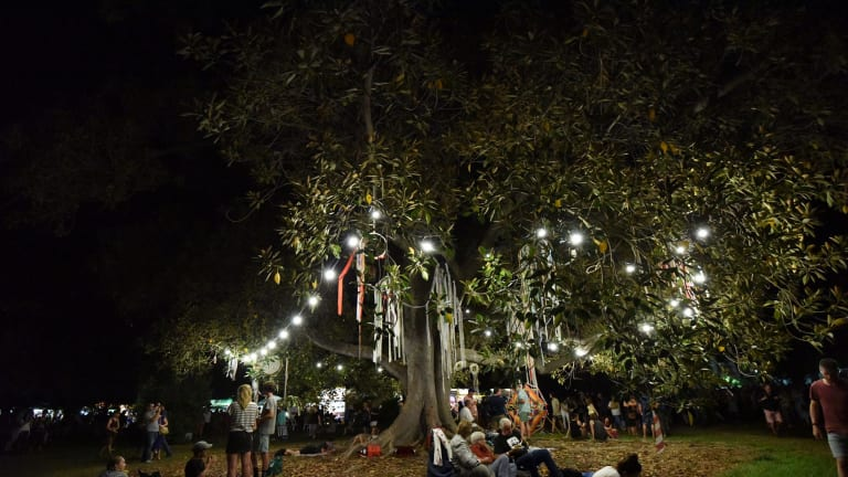 WOMAD was held under the trees in Adelaide's Botanic Park.