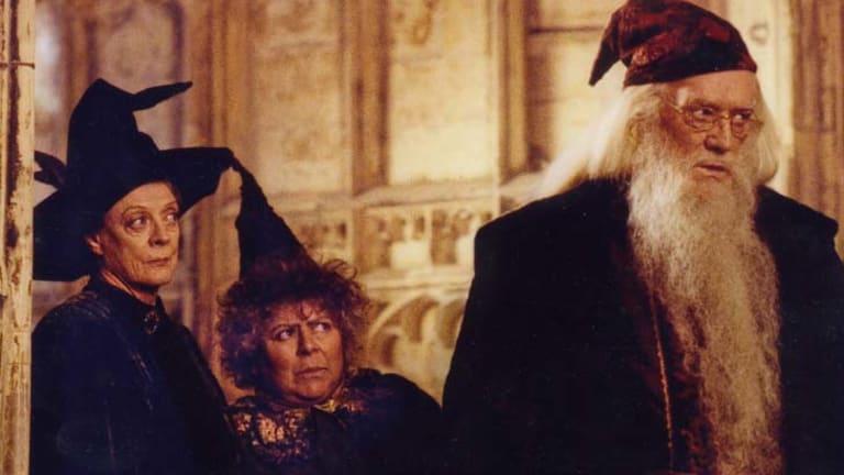 Weaving magic ... as Professor Sprout in <em>Harry Potter.</em>