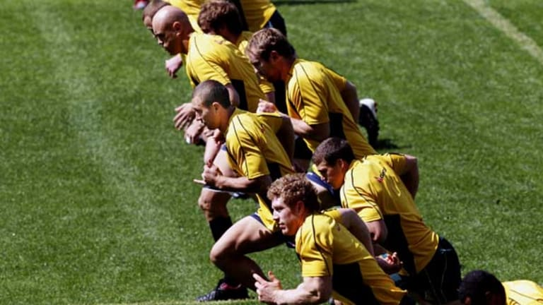 Man in the middle ... Quade Cooper and the Wallabies go through their paces at ANZ Stadium yesterday.