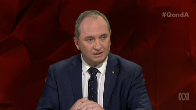 Barnaby Joyce would not rule out the government stepping in to provide direct finance to Adani to ensure the mine goes ahead.