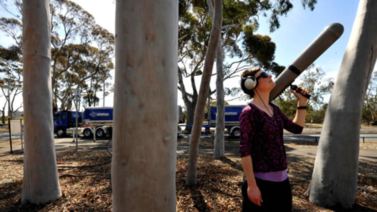 Dr Kirsten Parris listens to the birds.