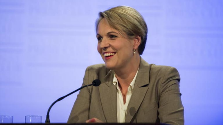 """""""It's quite extraordinary that [the government] would make a large change without reporting back to Australians"""": Opposition foreign affairs spokeswoman, Tanya Plibersek."""