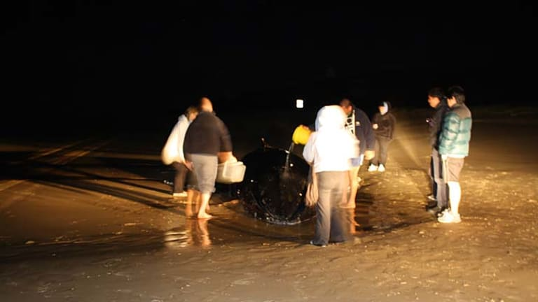 Rescuers worked throughout the night in a bid to keep the whale alive.