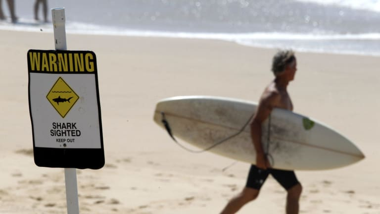 NCH  NEWS,    Surfest Indigenous pro put on hold due to shark sighting at Merewether beach. Image shows warning sign  but some surfers went out anyway  12th February 2015   pic    Darren Pateman