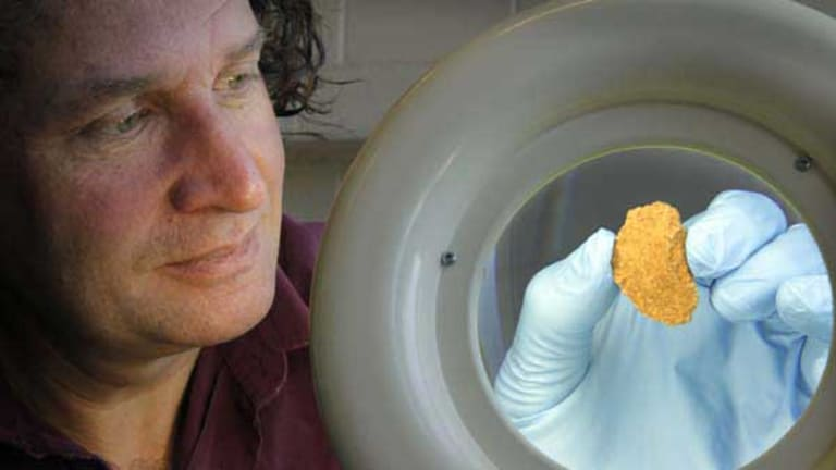 Dr Bruno David examines the 35,000-year-old axe fragment found at the Nawarla Gabarnmang site.